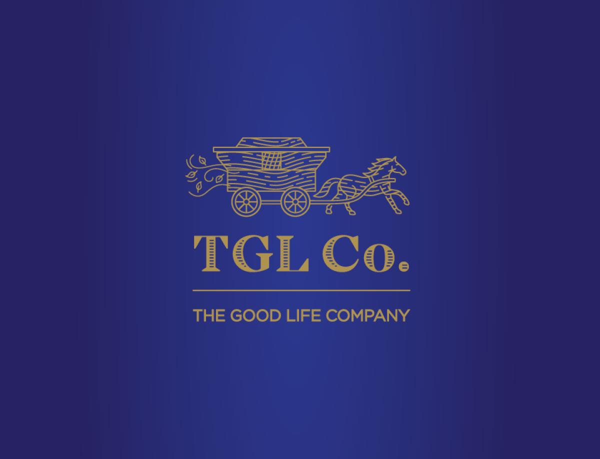 TGL Counter Display Unit Design